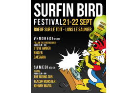 FESTIVAL SURFIN' BIRD